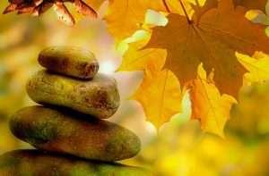 meditation + fall