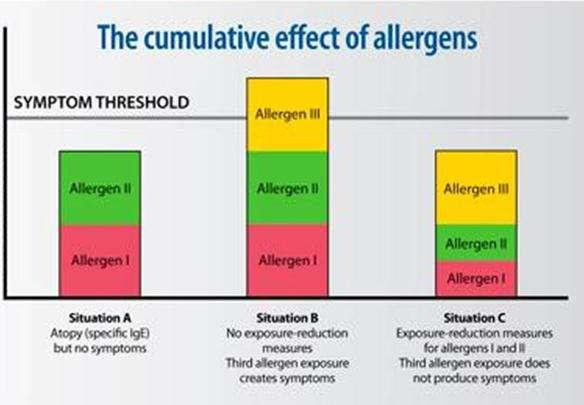 allergygraph
